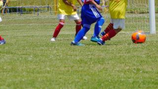 新潟市サッカー協会 登録チーム